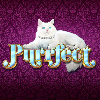 Purrfect_403x403